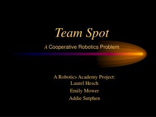 Team Spot A  Cooperative Robotics Problem