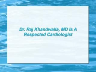 Dr. Raj Khandwalla