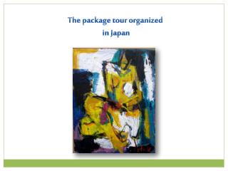 The package tour organized  in Japan