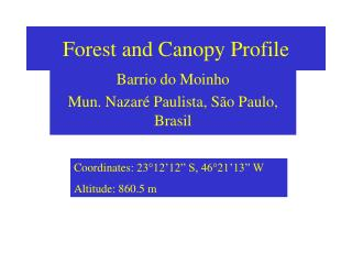 Forest and Canopy Profile