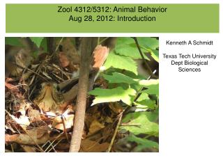 Zool 4312/5312: Animal Behavior Aug 28, 2012: Introduction