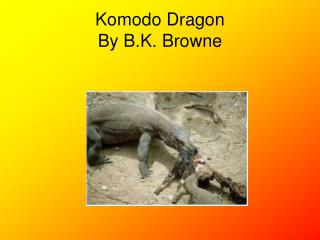 Komodo Dragon  By B.K. Browne