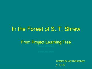 In the Forest of S. T. Shrew