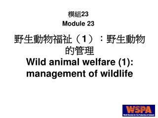 1:   Wild animal welfare 1: management of wildlife