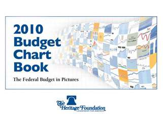 The Federal Budget in Pictures