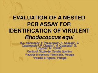 EVALUATION OF A NESTED PCR ASSAY FOR IDENTIFICATION OF VIRULENT Rhodococcus equi
