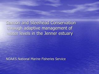Salmon and Steelhead Conservation  through adaptive management of  water levels in the Jenner estuary     NOAA S Nationa