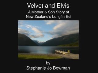 Velvet and Elvis