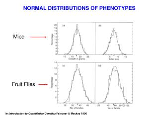 NORMAL DISTRIBUTIONS OF PHENOTYPES