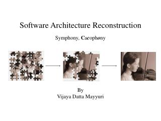 Software Architecture Reconstruction