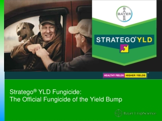 Stratego YLD Corn and Soybean Fungicide - 2012 Brand Guide