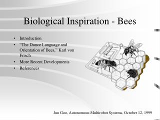 Biological Inspiration - Bees