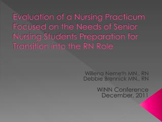 Evaluation of a Nursing Practicum Focused on the Needs of Senior Nursing Students Preparation for Transition into the RN
