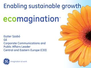 Eszter Szab  GE  Corporate Communications and Public Affairs Leader Central and Eastern Europe CEE