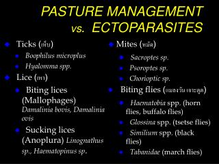 PASTURE MANAGEMENT  	 vs .  ECTOPARASITES