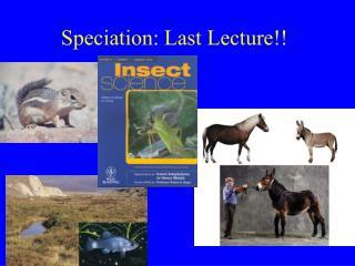 Speciation: Last Lecture!!