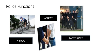 Law Enforcement  Levels and Functions