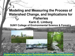 Modeling and Measuring the Process of Watershed Change, and Implications for Fisheries Karin E. Limburg SUNY College of