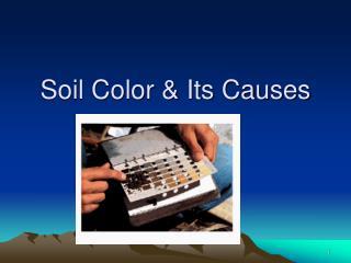Soil Color & Its Causes