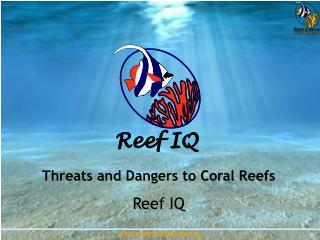 Threats and Dangers to Coral Reefs Reef IQ