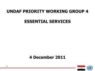 UNDAF PRIORITY WORKING GROUP 4 ESSENTIAL SERVICES