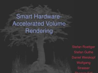 Smart Hardware-Accelerated Volume Rendering