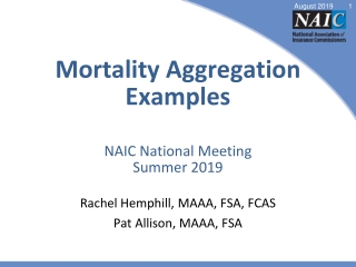 Mortality Aggregation Examples NAIC National Meeting Summer 2019