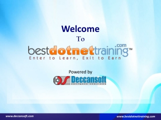 Online Dot Net Training