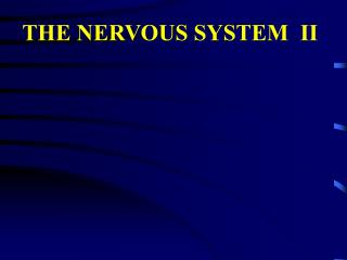 THE NERVOUS SYSTEM  II