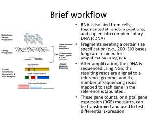 Analysis of RNA-Seq data:   Bias, normalization, and statistical tests for differential expression  May 14, 2012