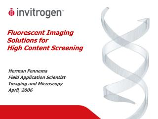 Fluorescent Imaging Solutions for  High Content Screening