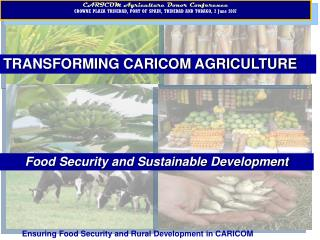 Transforming CARICOM Agriculture: Food Security and ...