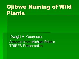 Ojibwe Naming of Wild Plants