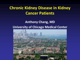 Chronic Kidney Disease in Kidney Cancer Patients