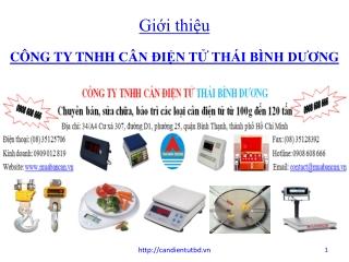 Can dien tu Thai Binh Duong