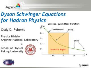 Dyson Schwinger Equations for  Hadron  Physics