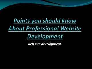 Points you should know About Professional Website Developmen