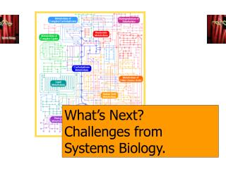 What's Next? Challenges from Systems Biology.