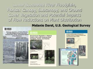 Lower Suwannee River Floodplain, Florida: Canopy, Subcanopy, and Ground Cover Vegetation and Potential Impacts of Flow R