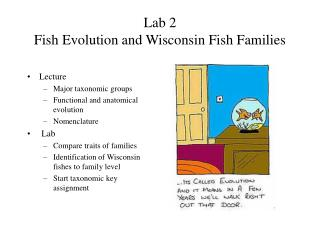 Lab 2 Fish Evolution and Wisconsin Fish Families