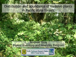 Distribution and abundance of invasive plants in Pacific state forests