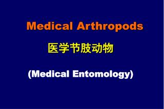 Medical Arthropods