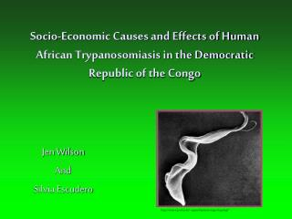 Socio-Economic Causes and Effects of Human African Trypanosomiasis in the Democratic Republic of the Congo