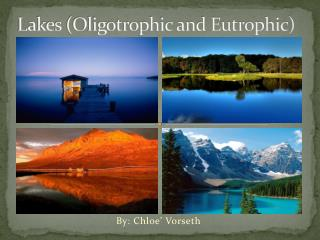 Lakes (Oligotrophic and Eutrophic)