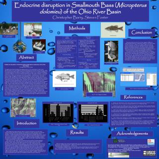 Endocrine disruption in Smallmouth Bass ( Micropterus dolomieu ) of the Ohio River Basin Christopher Barry, Steven Foste