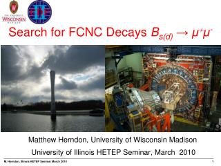 Search for FCNC Decays Bsd    -