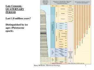 Late Cenozoic. QUATERNARY PERIOD Last 1.8 million years? Distinguished by ice ages (Pleistocene epoch).