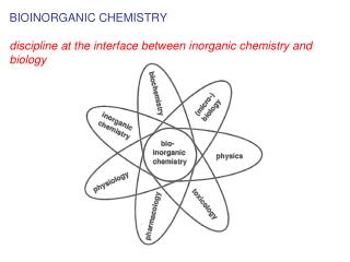 BIOINORGANIC CHEMISTRY  discipline at the interface between inorganic chemistry and biology