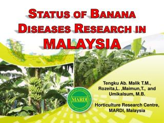 S TATUS  OF  B ANANA D ISEASES  R ESEARCH IN  MALAYSIA