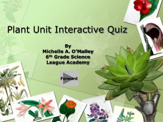 Plant Unit Interactive Quiz